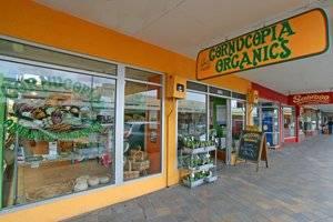 Cornucopia Organic Foods